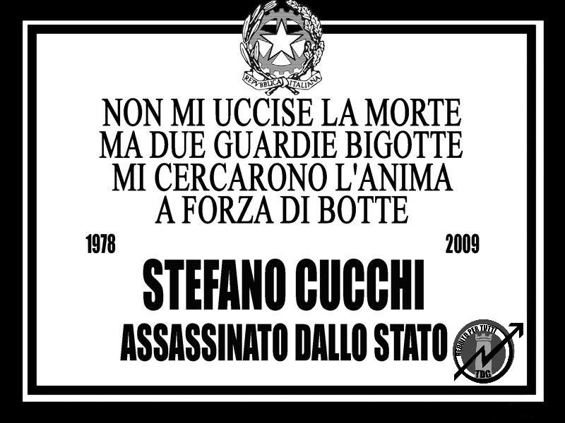 Tdg x Cucchi